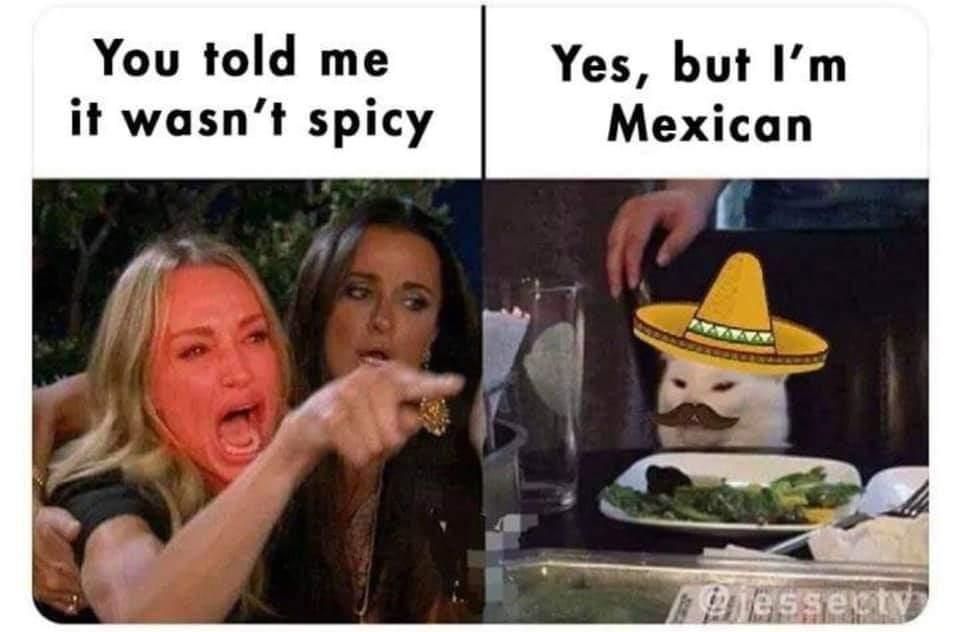 No sir I no illegal - meme