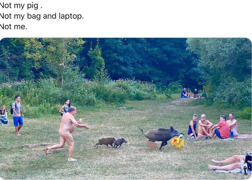Traduction : pas mon cochon, pas mon sac ni mon ordi portable, pas moi - meme