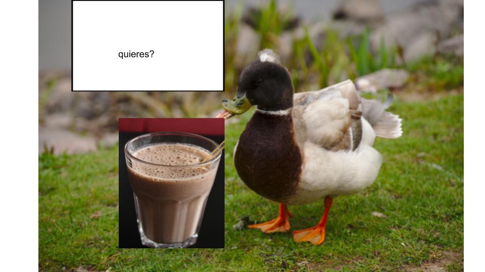 el pato se los ofrece.denle las gracias - meme