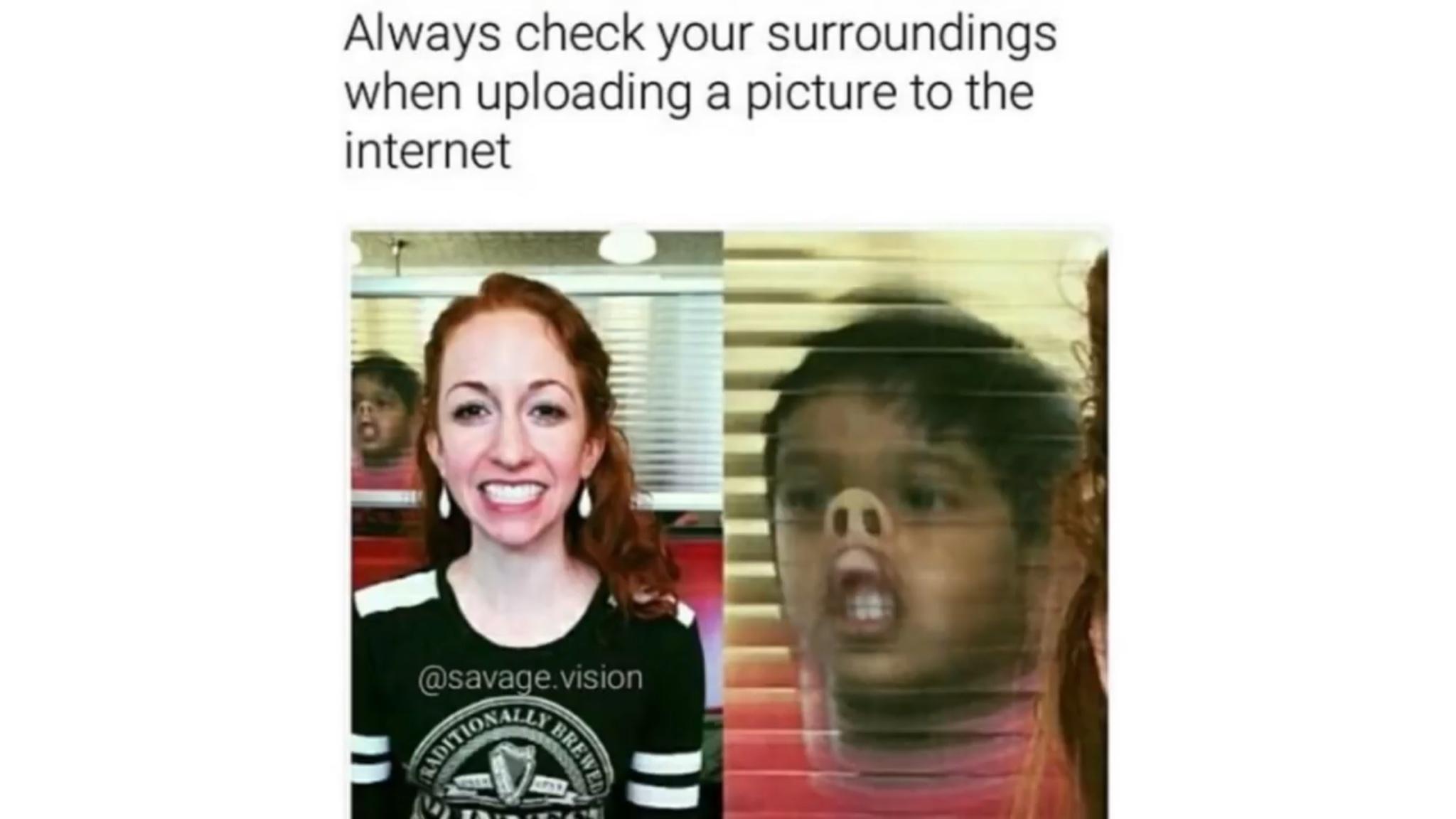 pig - meme