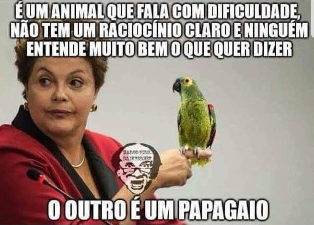 Dilma Rou$$eff e o papagaio - meme