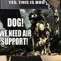 COD dogs be like