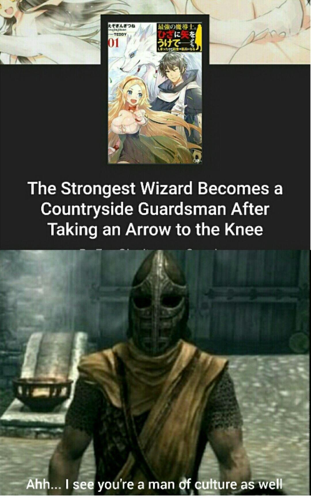 arrow in the knee - meme