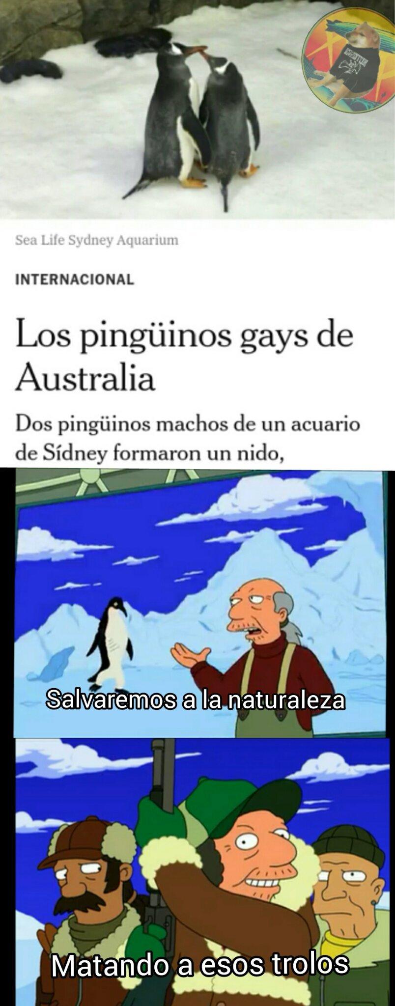 El mundo se esta volviendo gay - meme