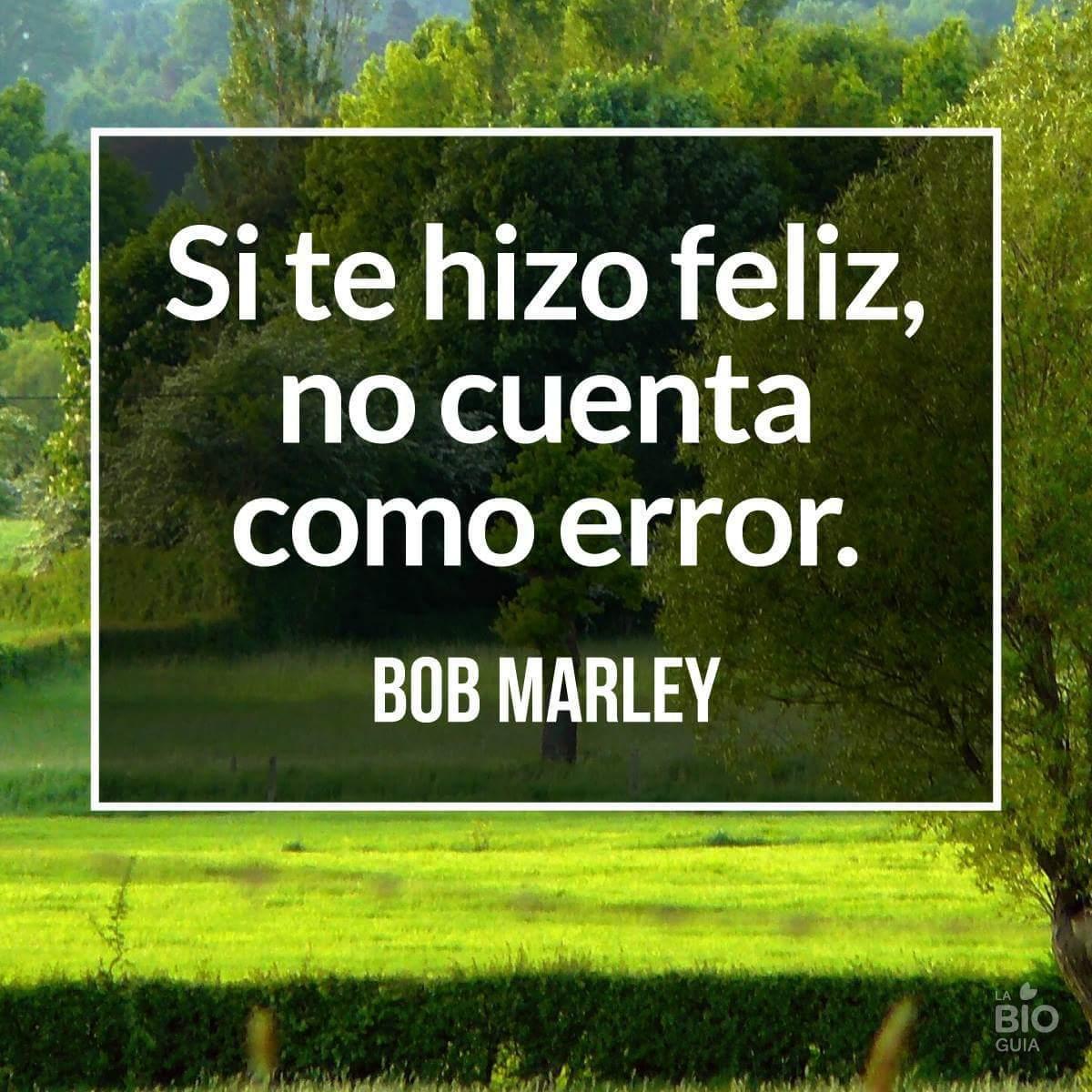 Bob marley un genio - meme