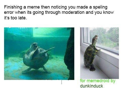 sorry for the spelling mistake ): - meme