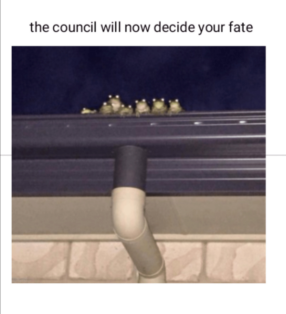 cursed council - meme