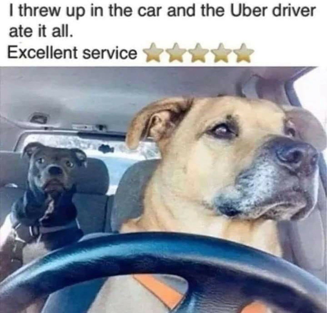 Uber good doggo - meme