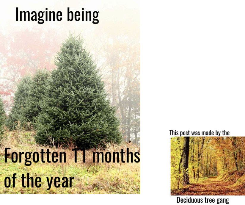 Deciduous tree gang - meme
