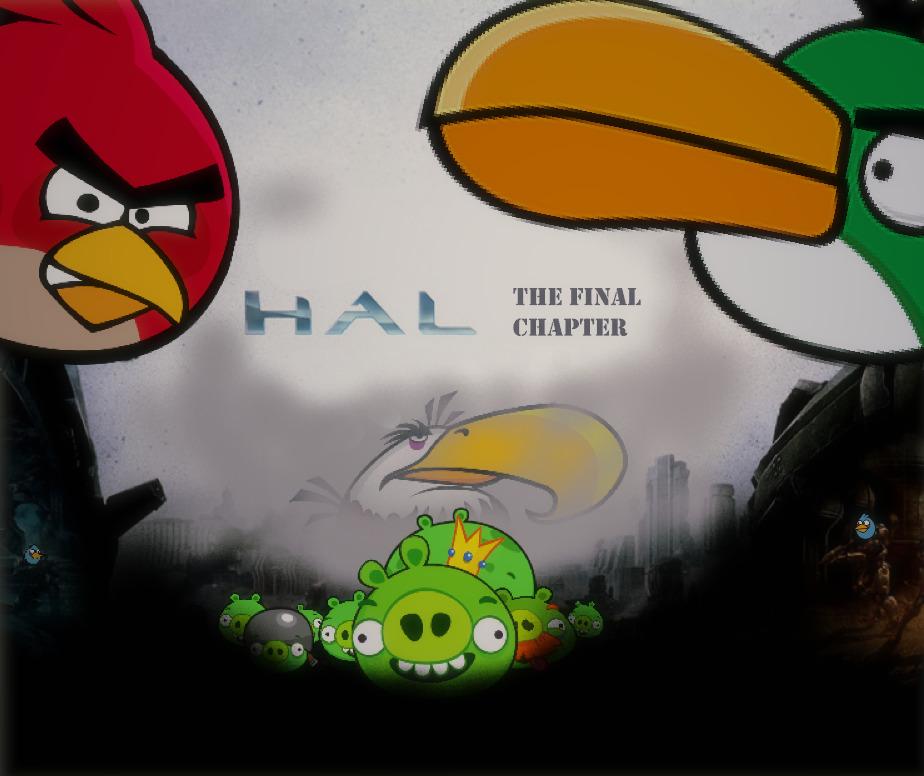 Todo principio tiene final (si recibe apoyo hago un master bird collection) - meme
