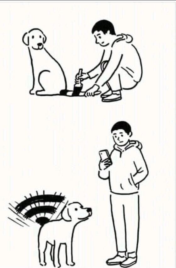 Wi-Dog - meme
