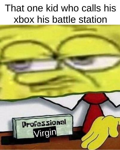 Professional virgin - meme