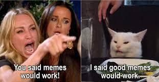 you dumb? - meme