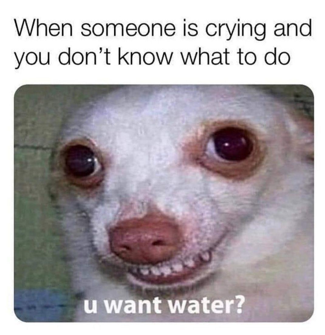 water anyone - meme