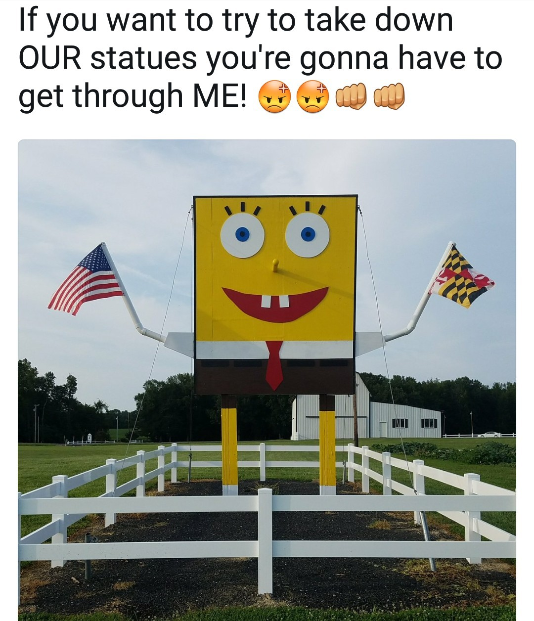 I don't have a problem with taking statues down, just don't do it so unilaterally. - meme