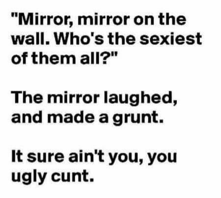 Fuck you, mirror - meme
