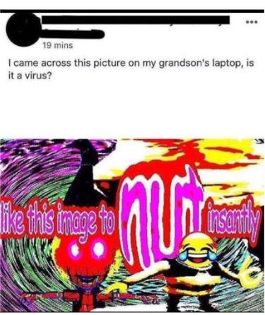 insta nut - meme