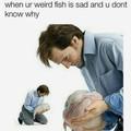 Trad: Quand ton Blooby est triste mais que tu ne sais pas pourquoi