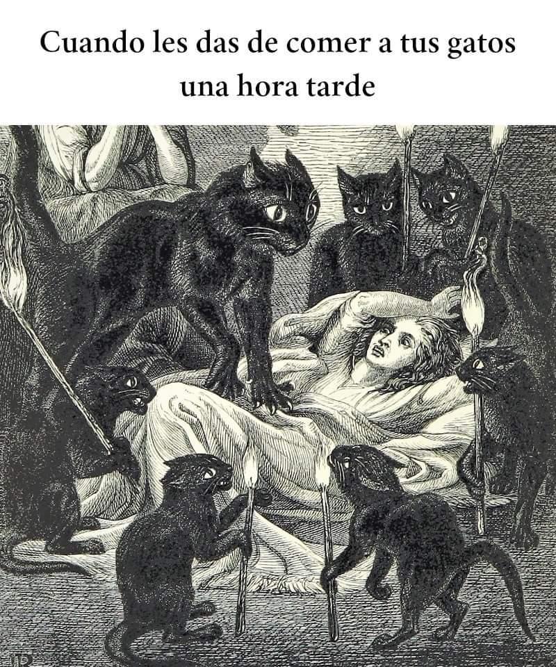 Gatanismo - meme