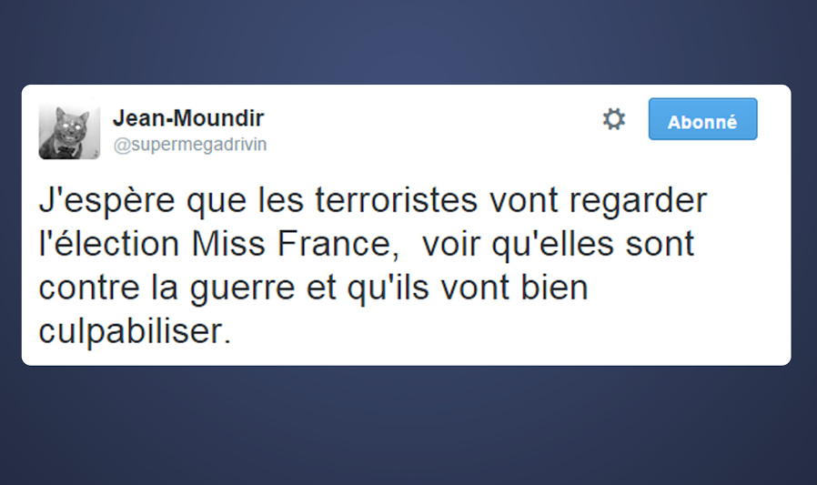 Miss France always country terroriste - meme