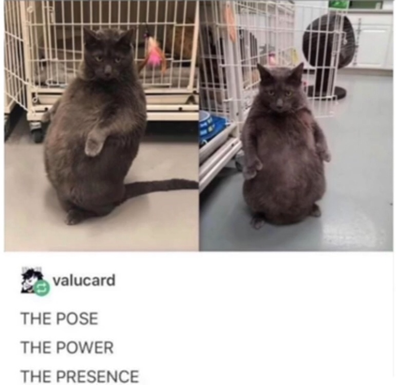 the power - meme