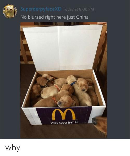 dont get kung flu - meme