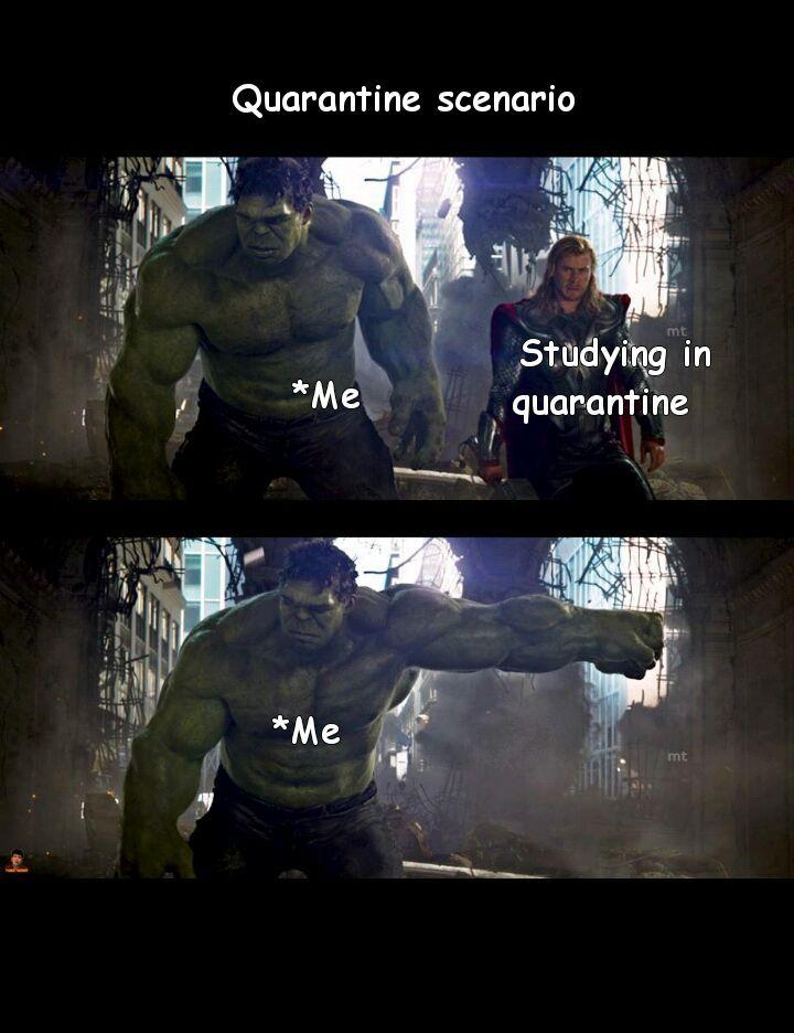 Procrastinate quarantine - meme