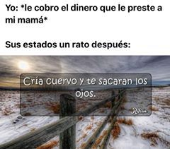 Mamá mamona - meme