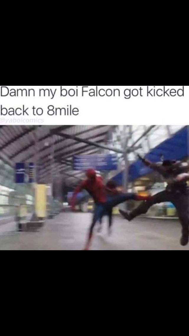 RIP Falcon, you were a solid lad. - meme