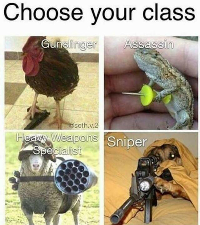 Assassin! - meme