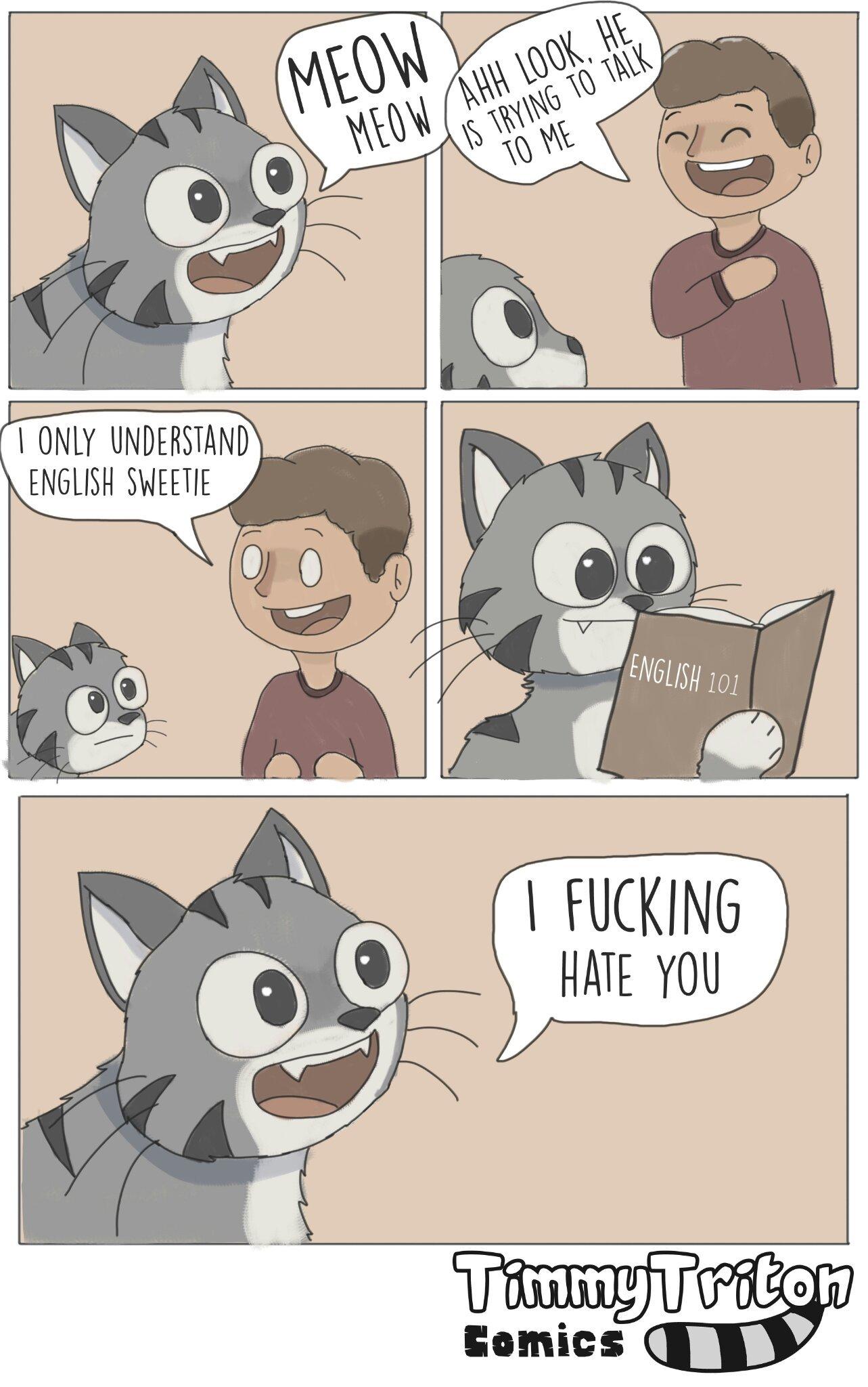 Meow Comic - meme