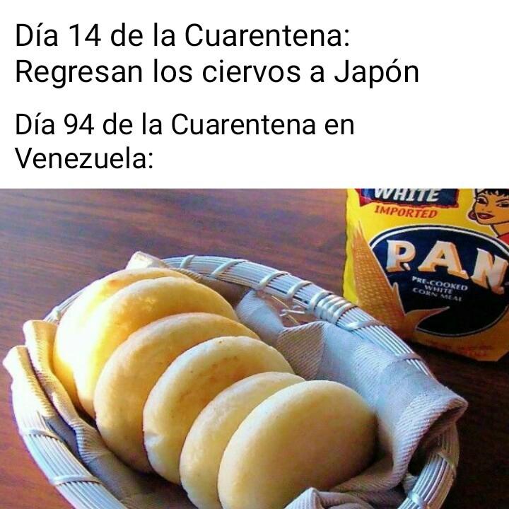 Son arepas venezolanas - meme