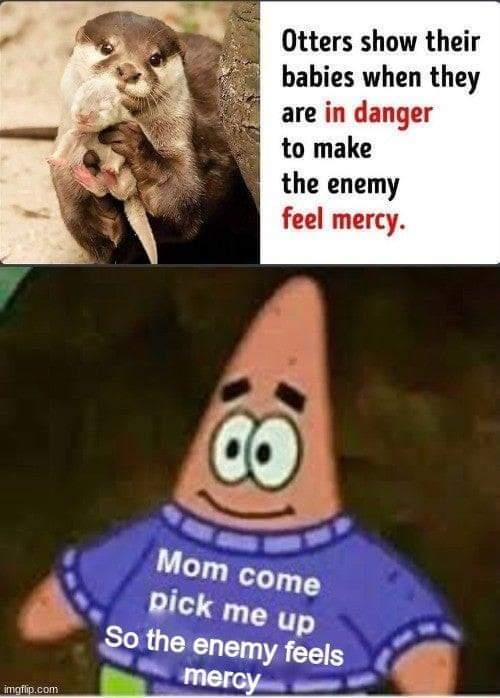 I'd like to feel Mercy :megusta: - meme