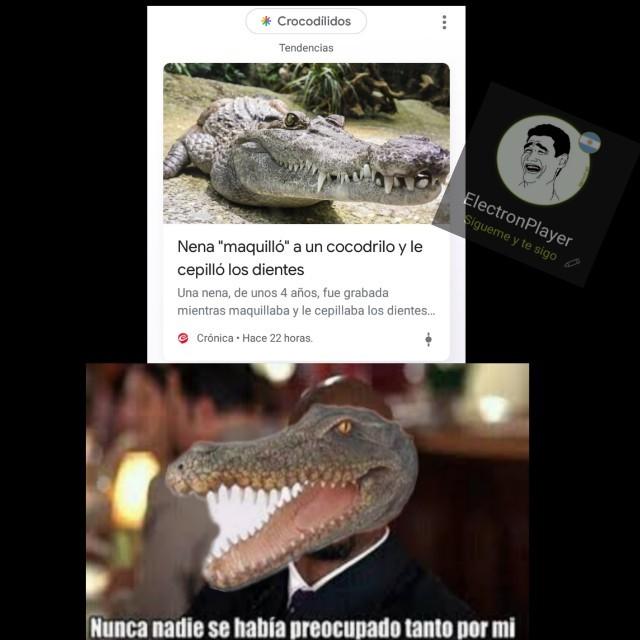 Cocodrilo  - meme