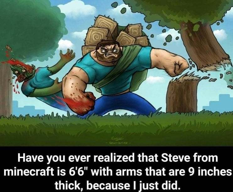 The Best Steve Memes Memedroid