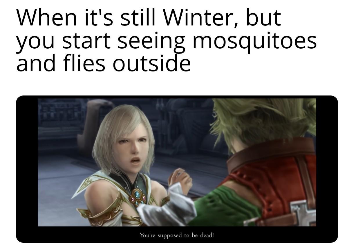 I love Final Fantasy 12 :) - meme