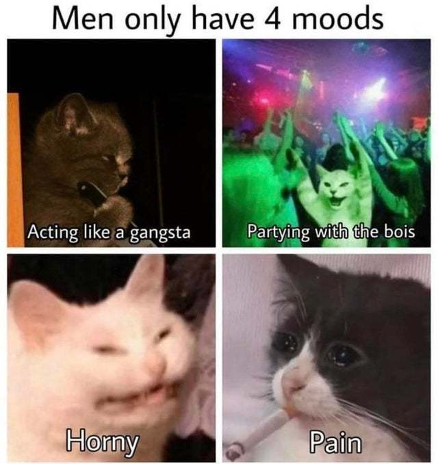 The 4 moods of men - meme