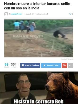 Claroo! Acercarte al oso y aste una selfie, que podría salir mal!? - meme