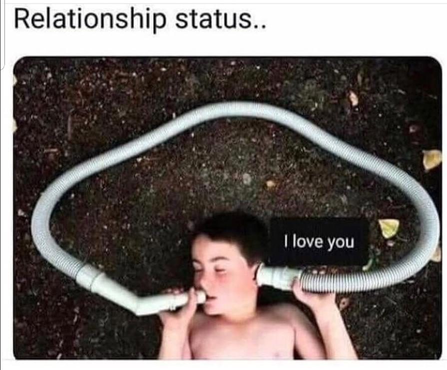 Love is pain - meme