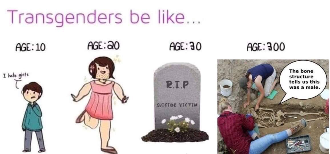 Era pra ser um meme, mas são apenas verdades.