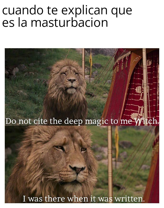 Pajero - meme