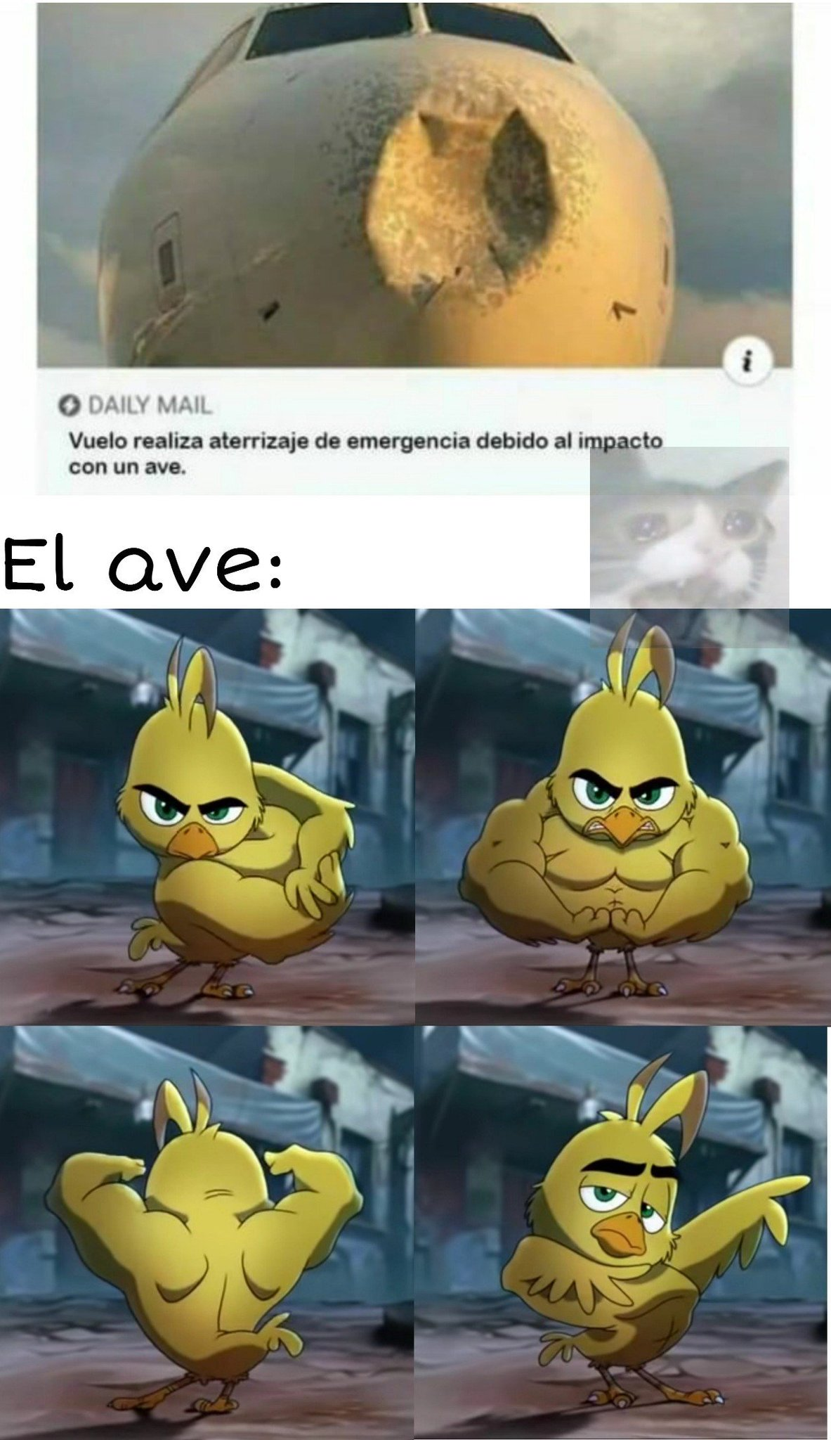 ESTA MAMADÍIIIIISIMO - meme