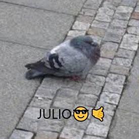 JULIO  - meme
