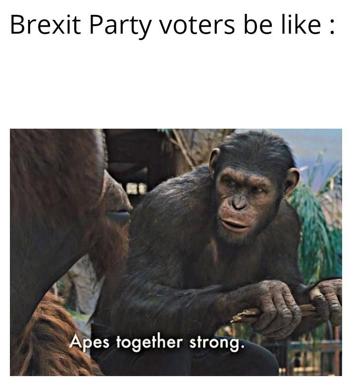 UK Politics - meme