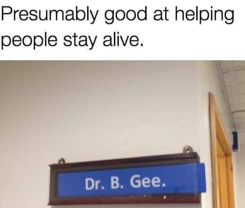 Ha Ha haa stay alive - meme