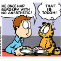 Garfield is a funny comic.