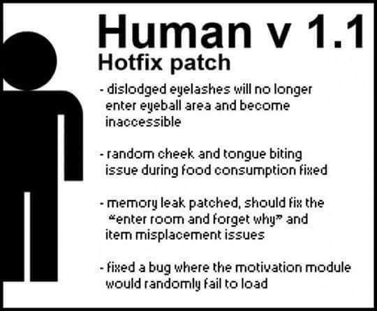 Human patch v1.1 - meme