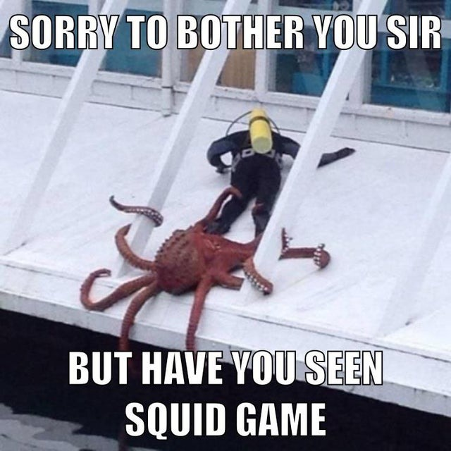 Have you seen squid game? - meme