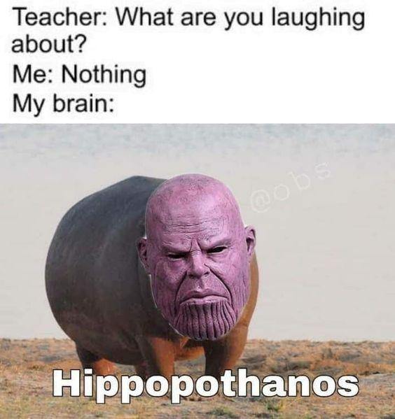 ha ha ha ha ha ha - meme