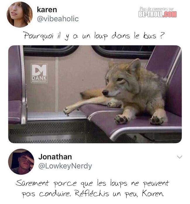 T'est vraiment conne karen - meme